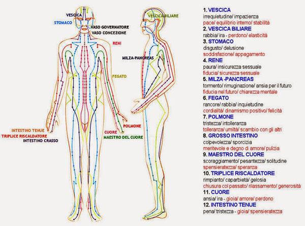 meridiani-energetici-canali-energetici-corpo-600px.jpg
